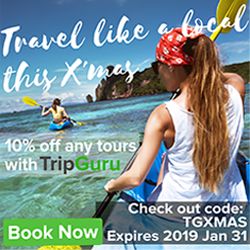 the-trip-guru coupon new xmas-2018
